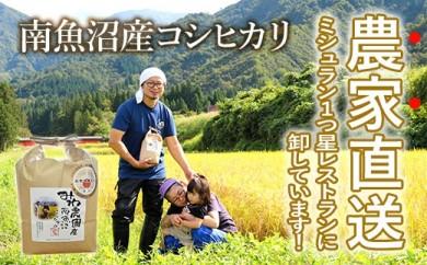 【30年度新米】玄米30kg 農家直送・ミシュラン1つ星店使用南魚沼産コシヒカリ