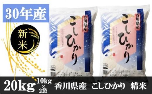 586 平成30年香川県産精米(コシヒカリ) 20kg