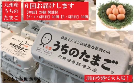【C-006】うちのたまご醤油セット(6回お届け)