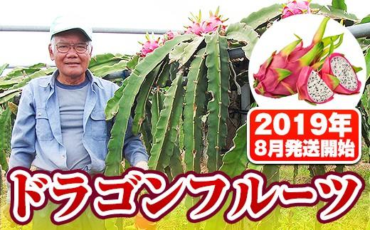 2601 トカテン農園 ドラゴンフルーツ(2019年8月発送開始)