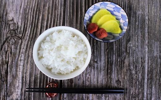 【新米】仁淀ブルーの恵み「おち米」 10kg