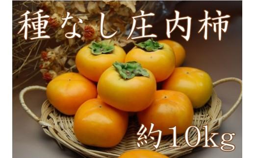 196 種なし庄内柿約10kg