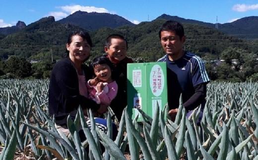 [№5634-0178]伝統農法の下仁田葱