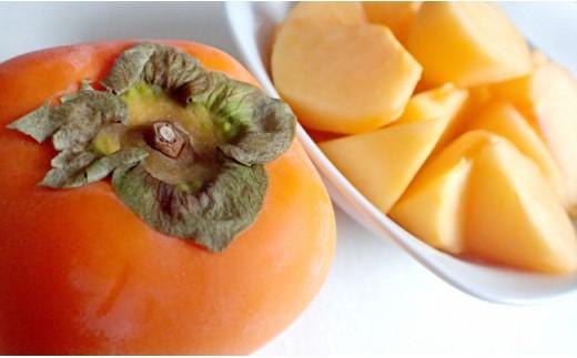 高栄養価フルーツ「大秋柿」 3㎏程度   30-1060