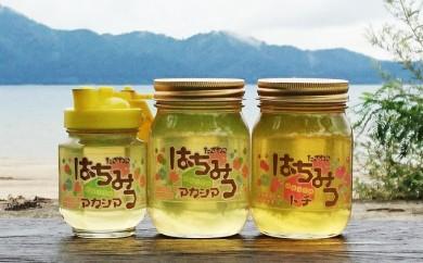[№5660-0464]田沢湖産天然はちみつ3本セット