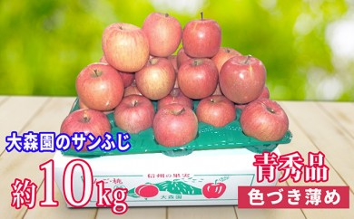 [№5915-0357]大森園のサンふじ (色つきが薄い青秀品) 約10kg