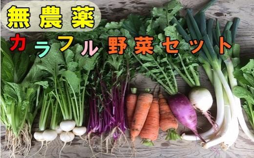 【289】 ひばり農園の無農薬カラフル野菜セット