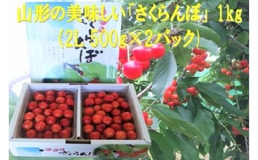 0032-2001 さくらんぼ(佐藤錦か紅秀峰)1kg 2Lサイズ