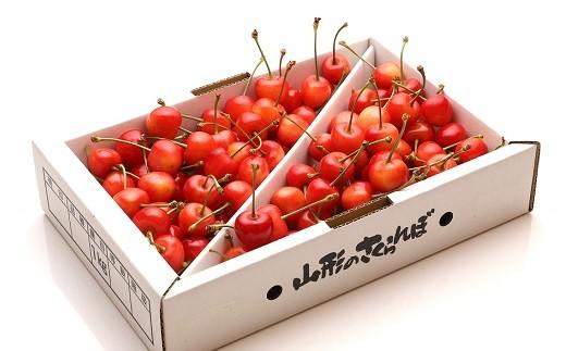 0103-205 さくらんぼ(佐藤錦)1kg M・Lサイズ
