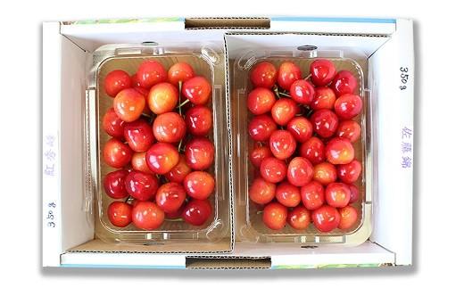 0044-204 温室栽培さくらんぼ(佐藤錦・紅秀峰)700g 特秀品