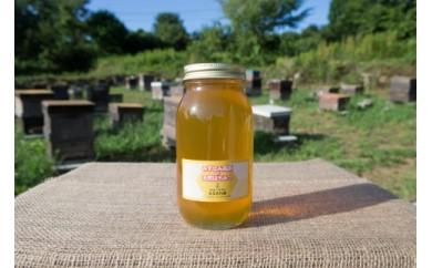 天然無添加非加熱の熟成ハチミツ(山桜1kg)