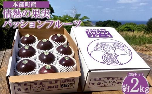 【2019年発送】本部町産情熱の果実(パッションフルーツ)2箱セット(約2kg)