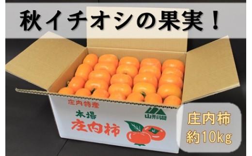 171 小野寺農園の庄内柿1箱約10kg