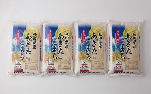 120P3002 秋田県産あきたこまち20kg【120P】