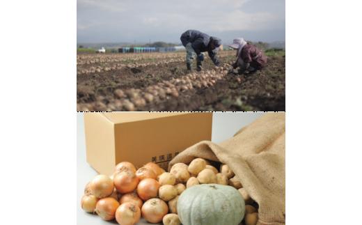 [015-28]平成30年産 野菜詰め合わせ