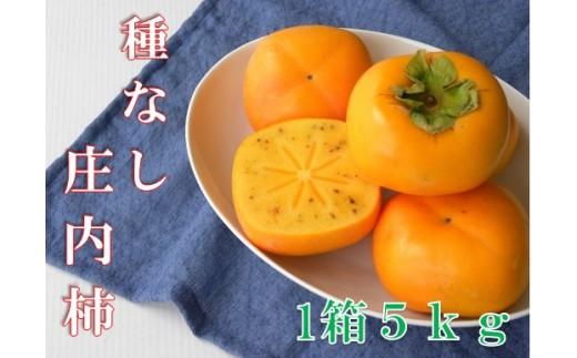 健康色!庄内柿約5kg