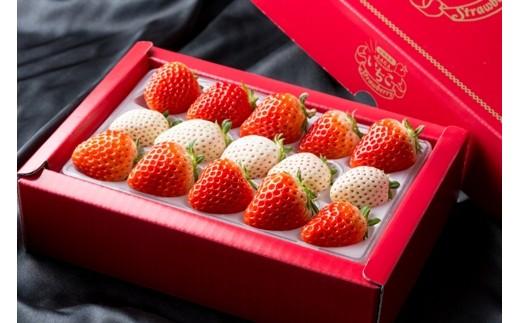 【J-3】白石産いちご「パールホワイト」&「さがほのか」赤白セット