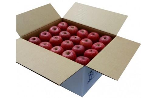 FY18-791 山形のふじりんご特秀品10kg26-40玉