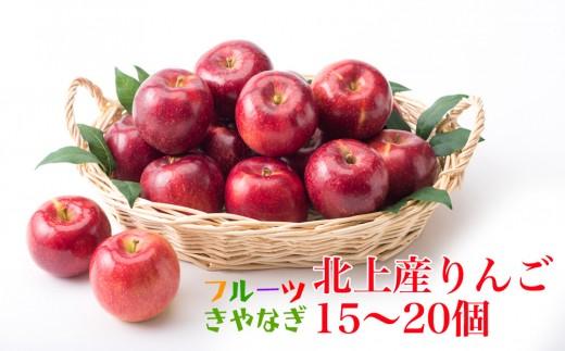 北上産 果汁たっぷり サンふじ りんご 15~20個