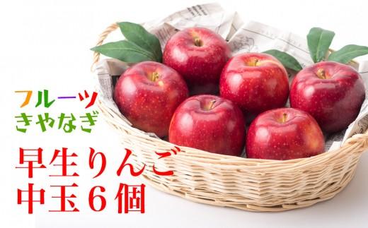 北上産 果汁たっぷり 早生りんご 中玉6個