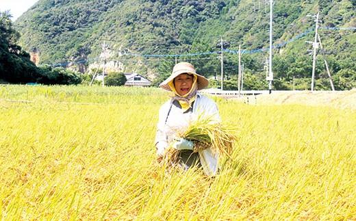 天草わくわく便【有機肥料・自然乾燥】潮育ち米 コシヒカリ 精米 5kg