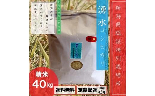 特別栽培米「湧水コシヒカリ」40㎏(分割発送可)