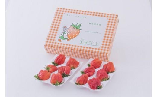 【15B007】 金井いちご園のいちご(やよいひめ)Bコース