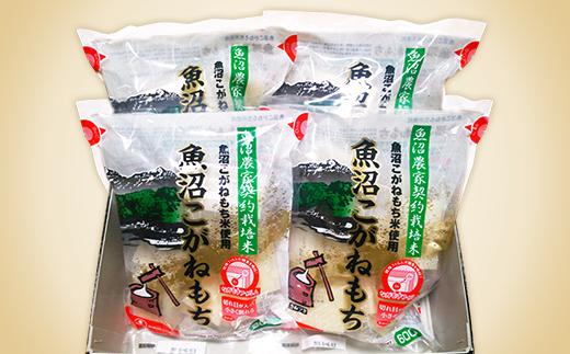 1H-050 新潟県魚沼産こがねもち(長岡川口地域)2.4kg(600g×4袋)