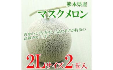 [№5532-0108]熊本県産 マスクメロン 2Lサイズ2玉入り◆クレジット限定◆