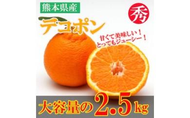 [№5532-0105]熊本県産 デコポン 約2.5kg◆クレジット限定◆