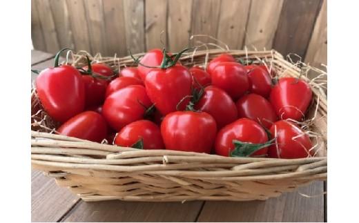 甘さ抜群!!トマト嫌いも食べられるトマトベリー