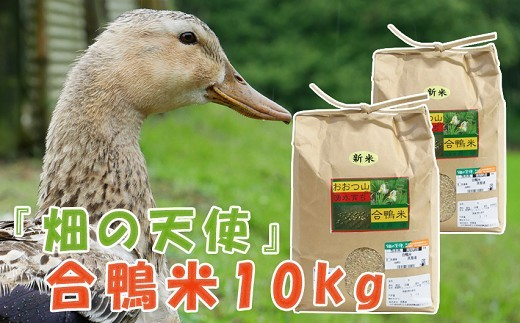 K05-5 『畑の天使』の合鴨米 玄米または白米 10kg