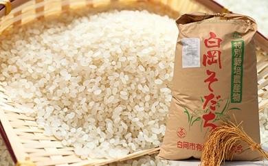 [№5672-0238]特別栽培米 彩のかがやき10kg