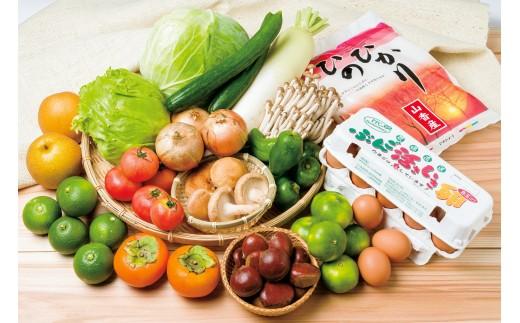 A4035 杵築で収穫された季節の野菜・果物・お米・玉子の詰合わせセット