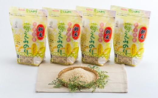 【萌えみのり】 8㎏ 北上産 ブランド米 美味しいごはん★小分け