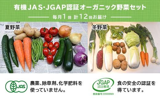 111 有機JAS・JGAP認証 オーガニック野菜セット毎月1回、計12回お届け「定期便」