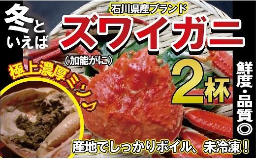 100005. 【未冷凍!冬の贅沢】石川産 加能ガニ(2杯)