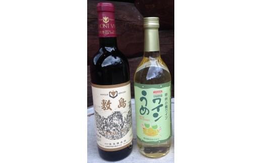 敷島醸造 敷島 赤・甲州小梅ワインセット
