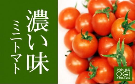A5-044 頑固おやじが作ったミニトマト約1.3kg(約160g×8パック)