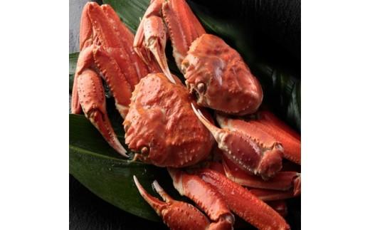 7 ボイル 超巨大姿ずわい蟹(3尾) 3kg