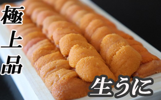 CC-48018 【北海道根室産】エゾバフンウニ(黄色)130g×1折