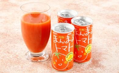 [№5783-0251]北海道月形町産完熟トマト「桃太郎」使用 『月形まんまるトマト』30本