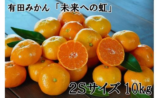 239.【小粒・2S】有田みかん「未来への虹」(10kg)