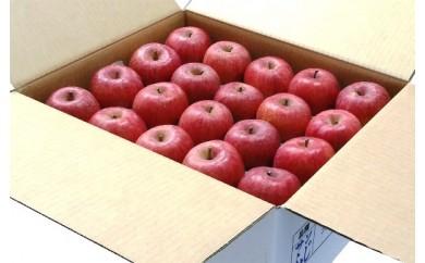 BG01 山形のふじりんご特秀品10kg
