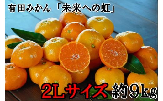 240.【大粒・2L】有田みかん「未来への虹」(約9kg)