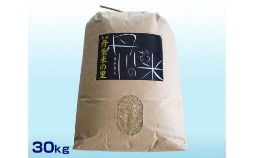 No.555 丹生米の里丹川のお米 ヒノヒカリ玄米 30kg / コメ ひのひかり 健康 大分市 人気