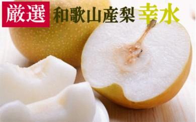 [№5745-2317][厳選・産直]和歌山産の梨(幸水)約4kg