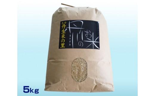 No.542 丹生米の里丹川のお米 ヒノヒカリ玄米 5kg / コメ ひのひかり 健康 大分市 人気
