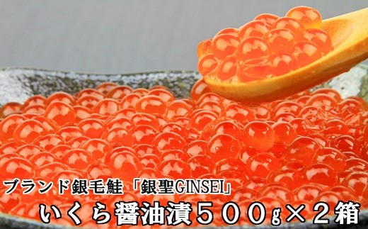 [02-298]前浜産 銀聖いくら醤油漬(500g×2箱)