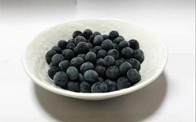 [№5712-0203]秋葉果樹園 完熟冷凍ブルーベリー